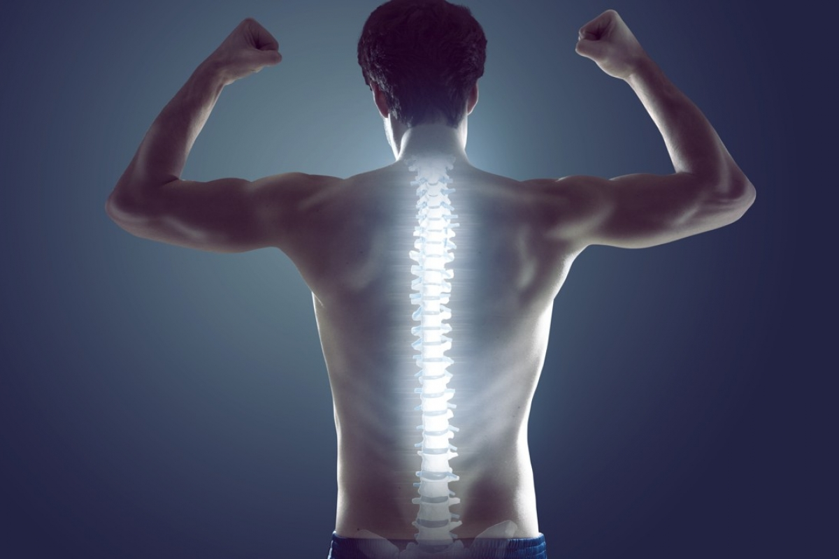 Do you know the health of your spine is key to the health of your whole body? | Ronak Gajjar